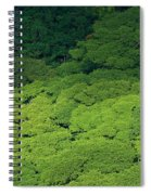 Over The Treetops Spiral Notebook