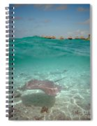 Over-under Water Of A Stingray At Bora Bora Spiral Notebook