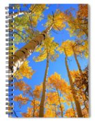 Over Your Head Spiral Notebook
