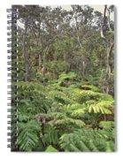 Overlooking The Rainforest Spiral Notebook