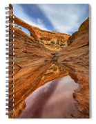 Owachomo Reflected Spiral Notebook