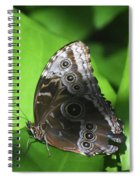 Owl Butterfly On A Cluster Of Green Leaves Spiral Notebook