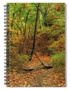 Owl Canyon In Autumn 2 Spiral Notebook