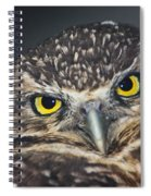 Owl Face To Face Spiral Notebook