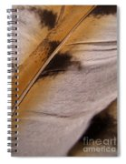 Owl Feathers Photograph Spiral Notebook