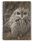 Owl In The Woods Spiral Notebook