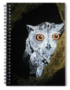 Owl In Tree Spiral Notebook