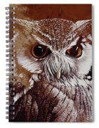 Owl Painting  Spiral Notebook
