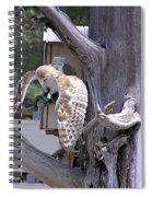 Owl Takeoff Spiral Notebook