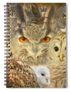 Owl You Need Is Love Spiral Notebook