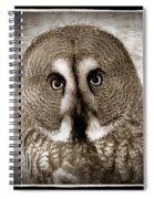 Owls Eyes -vintage Series Spiral Notebook