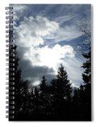 Owls Head Sky Spiral Notebook