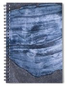 Oyster Shell Spiral Notebook
