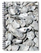 Oyster Shells On Cumberland Island Spiral Notebook