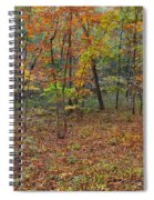 Ozark Forest In Fall 1 Spiral Notebook