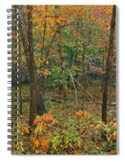 Ozark Forest In Fall 2 Spiral Notebook