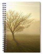 Ozarks Misty Golden Morning Sunrise Spiral Notebook