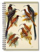 pa FB WilliamTCooper LesserBirdsOfParadise Penny Olsen Spiral Notebook