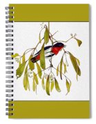 pa TonyOliver AustralianBirds 13 MistletoeBird Tony Oliver Spiral Notebook