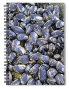 Pacific Blue Mussels Spiral Notebook