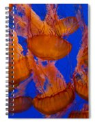 Pacific Sea Nettle Cluster 1 Spiral Notebook
