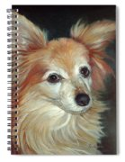 Paco The Papillion Spiral Notebook