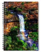 Paddy's Falls Spiral Notebook