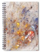 Paean To Pollack Spiral Notebook