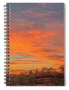 Painful Truth Is Better Than A Pleasant Lie.  Spiral Notebook