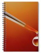 Paint Ball Spiral Notebook