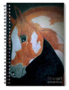 Paint Horse Color Pencil Spiral Notebook