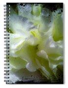 Paint Splattered Frame Spiral Notebook