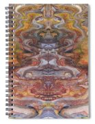 Paintblot Number Six Spiral Notebook