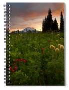 Paintbrush Sunset Spiral Notebook