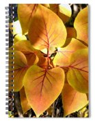 Painted Autumn Lilac Spiral Notebook