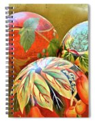Painted Balls Spiral Notebook