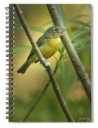 Painted Bunting Female Spiral Notebook