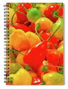 Painted Chilies Spiral Notebook