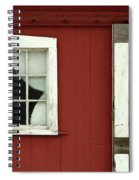 Painted Curtains Spiral Notebook