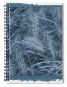 Painted Cyanotype Golden Wheat Spiral Notebook