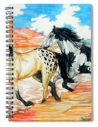 Painted Desert Spiral Notebook