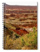 Painted Desert Panorama Spiral Notebook