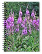 Painted Fireweed Spiral Notebook