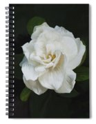 Painted Gardenia Spiral Notebook