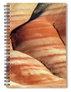Painted Hills Stripes Spiral Notebook