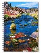 Painted Hot Creek Springs Spiral Notebook