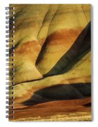 Painted In Gold Spiral Notebook