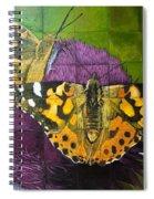 Painted Lady Butterflies Spiral Notebook