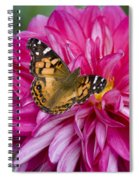 Painted Lady On Dahlia Spiral Notebook