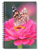 Painted Lady On Red Zinnia 3  Spiral Notebook